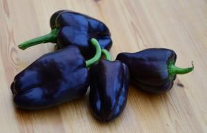 hnede papriky