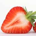 jahody zdravi nahled