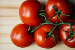rajce jedle