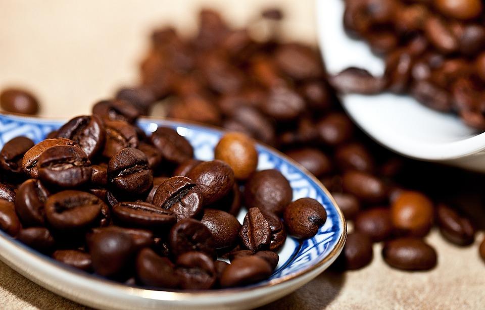 kava zrnka