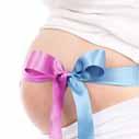tehotenstvi brisko nahled