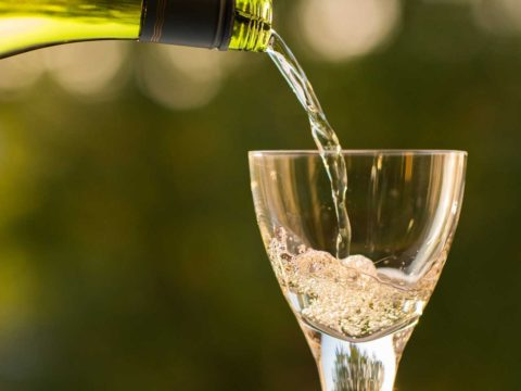 vino slavnosti