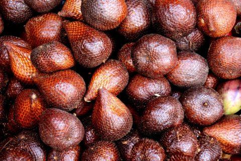 salak ovoce
