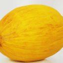 zluty meloun