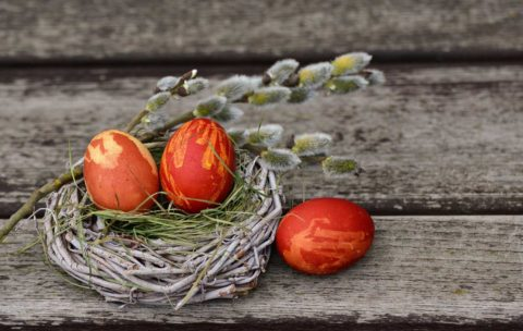 vejce v cibuli