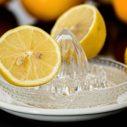 citron nahled