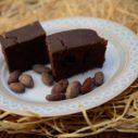fitness fazolove brownies
