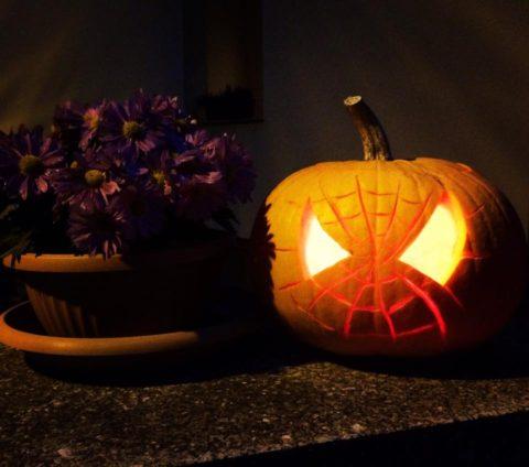dyne spiderman