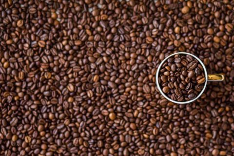 kava zrnkova