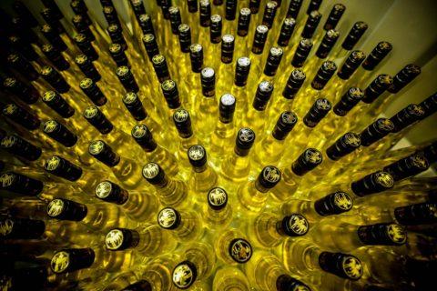 svatomartinska vina 2017