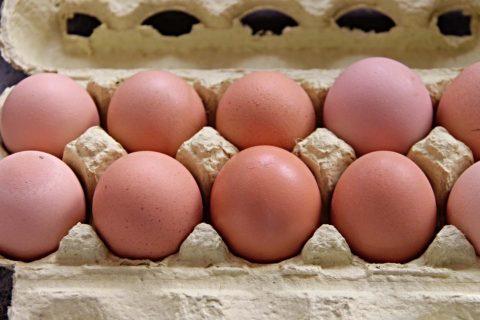 jak poznat cerstva vejce