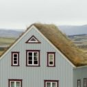 zelena strecha nahled