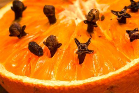 hrebicek repelent