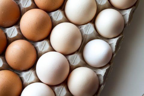 slepici vejce