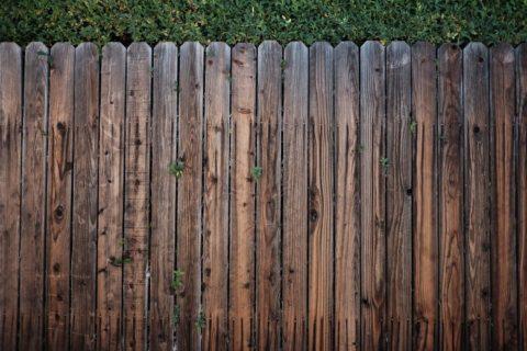 dreveny plot