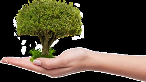 ecoworld ekologie 2018