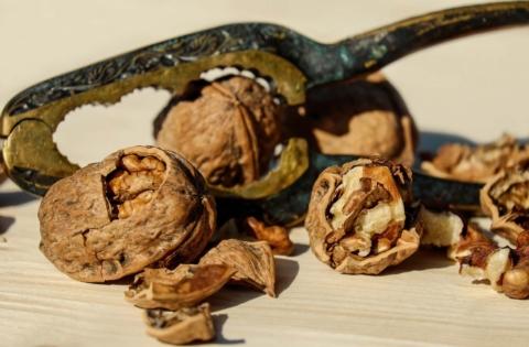 skorapky z vlasskych orechu