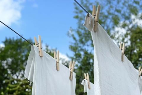 test prasku na prani