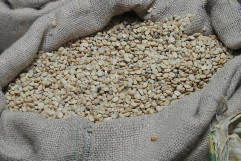 kavova zrna neprazena