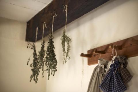 suseni bylinek na vzduchu
