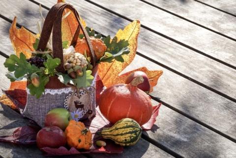 podzimni dekorace z dyni