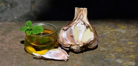česnekový olej