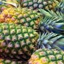 jak vybrat ananas