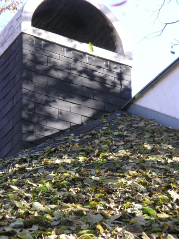 strecha pred zimou