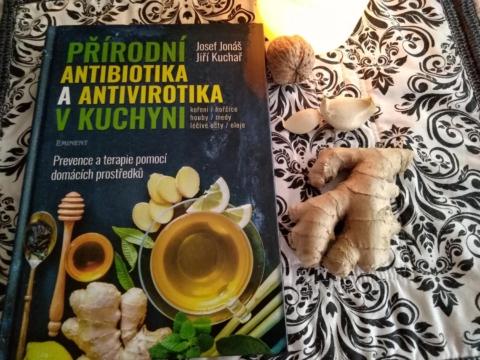 prirodni antivirotika